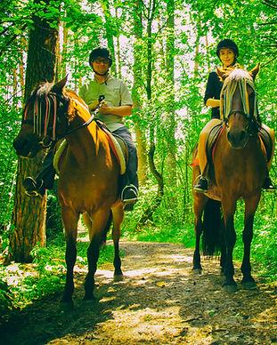 Романтический ужин в лесу с прогулкой на лошадях, Киев