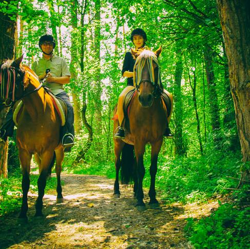 Свидание в лесу с прогулкой на лошадях