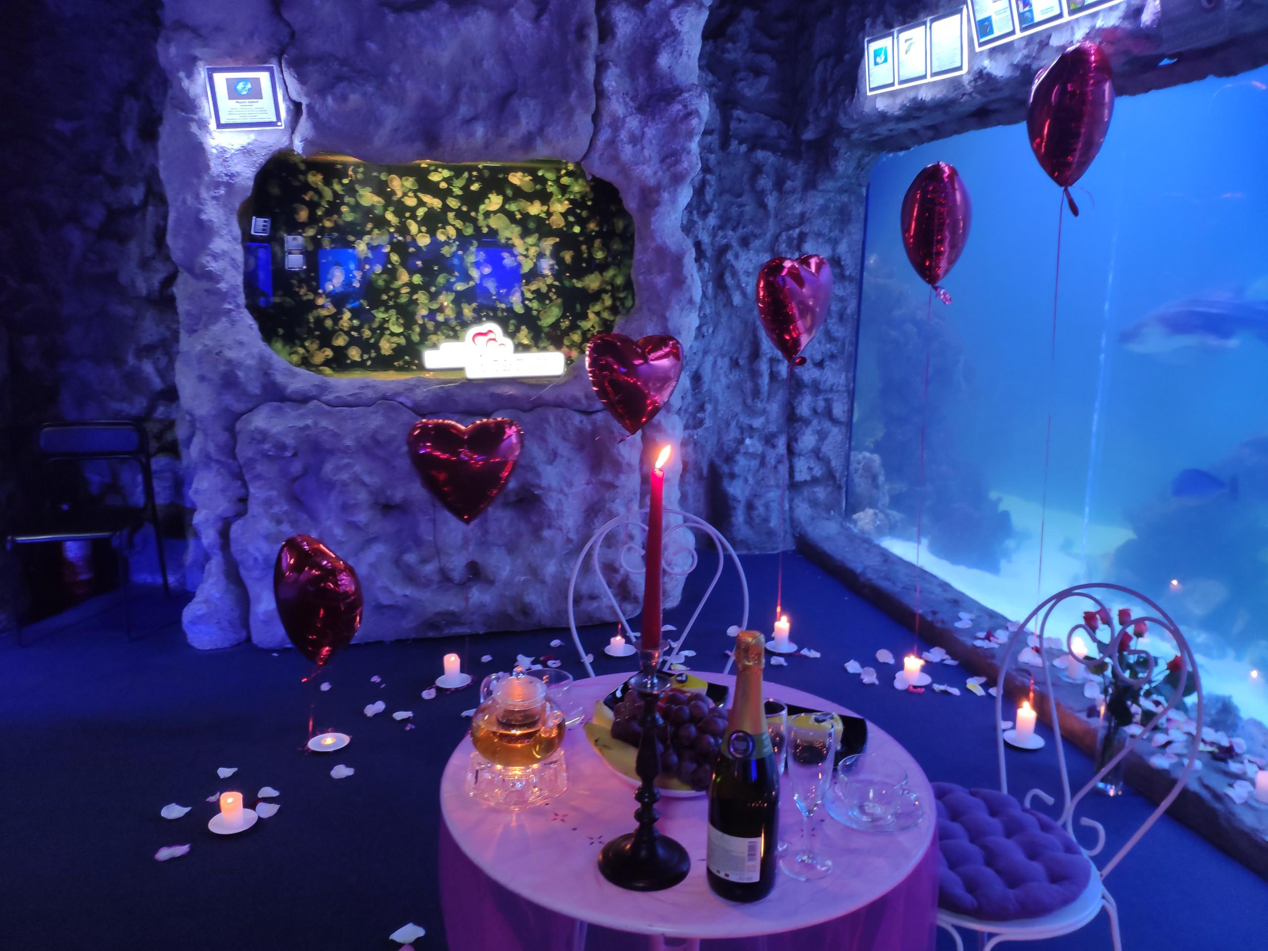 Романтический ужин в Океанариуме, Киев