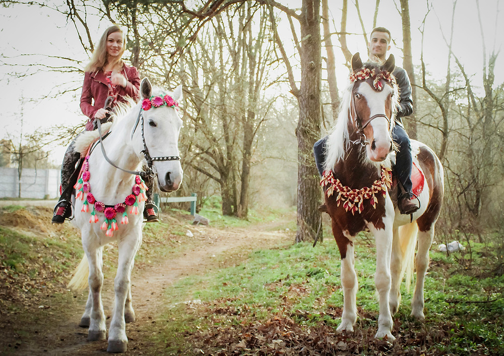Альтечо, романтический ужин в лесу с прогулкой на лошадях 17
