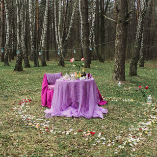 Альтечо, романтический ужин в лесу (12).