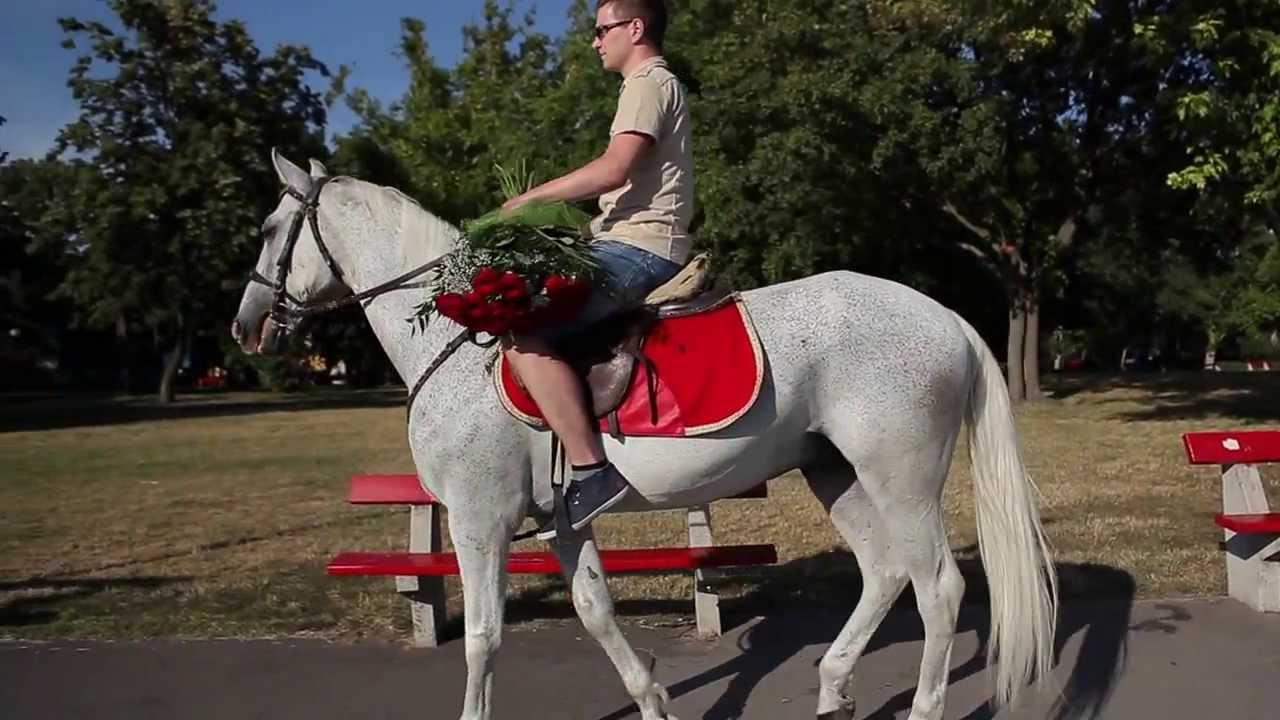 Принц на белом коне (11)