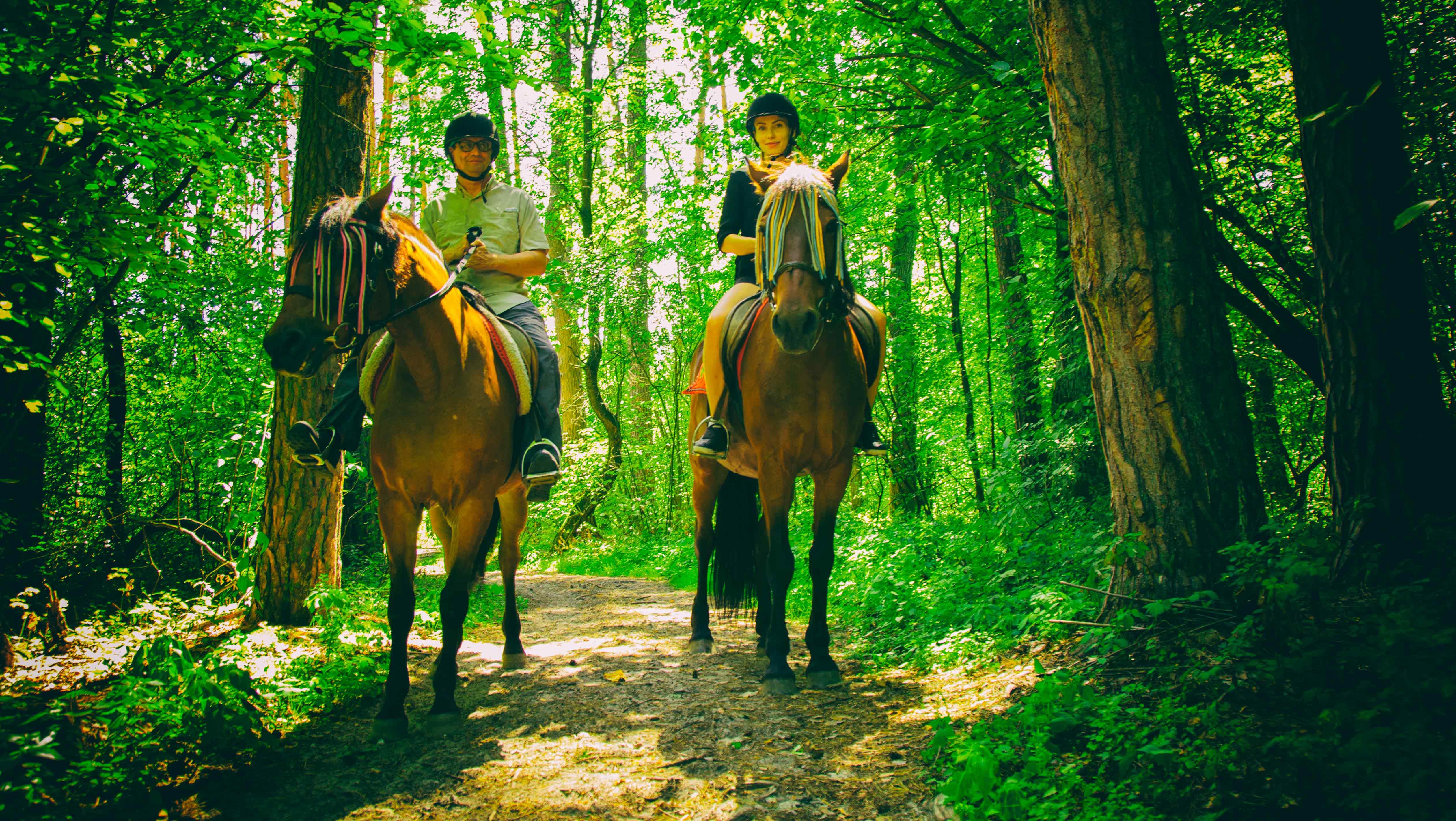Свидание-в-лесу-(1)