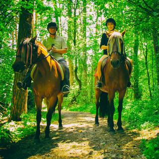 Свидание в лесу (1).jpg