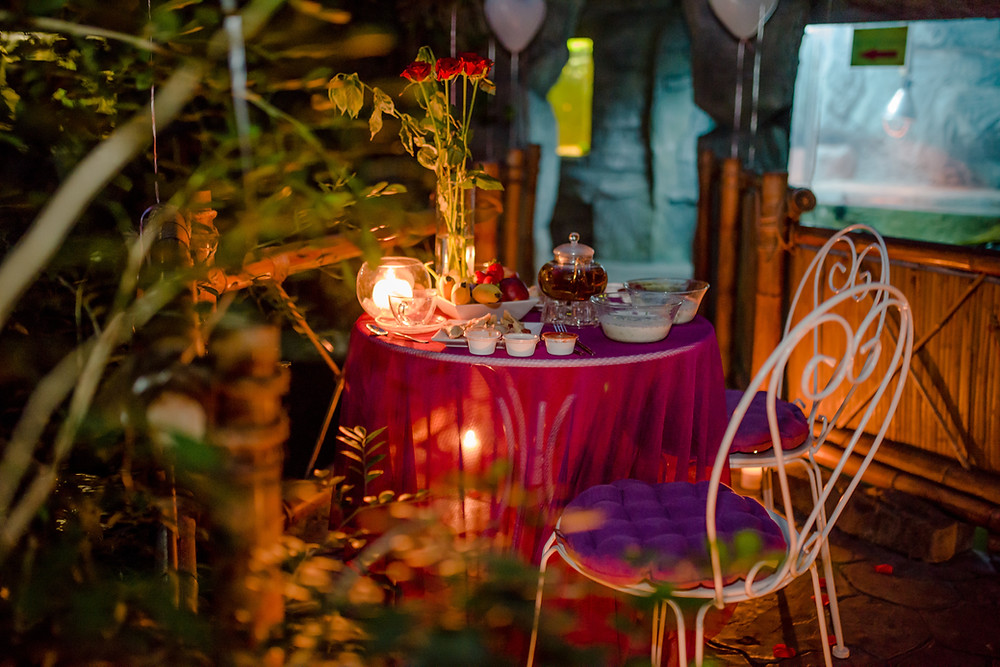 Романтический ужин в Джунглях у Водопада от сервиса романтики Альтечо, Киев