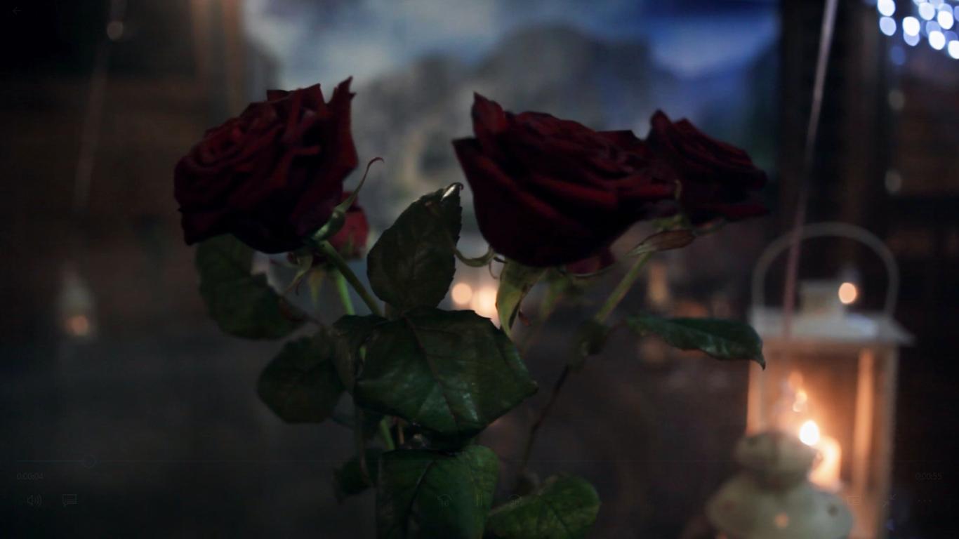 Романтический ужин в горячем чане под открытым небом от сервиса романтики Альтечо (5)