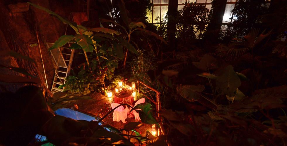В тропической оранжерее (джунглях) (16).