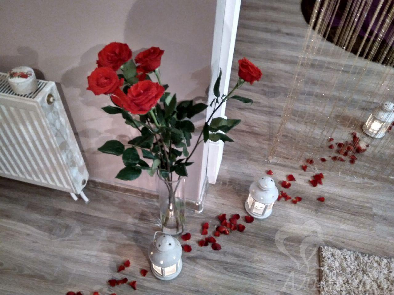 Романтический ужин дома, Киев, Альтечо (5)
