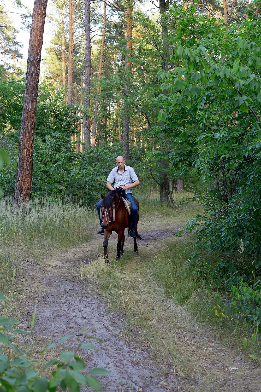 Романтический ужин в лесу с прогулкой на лошадях