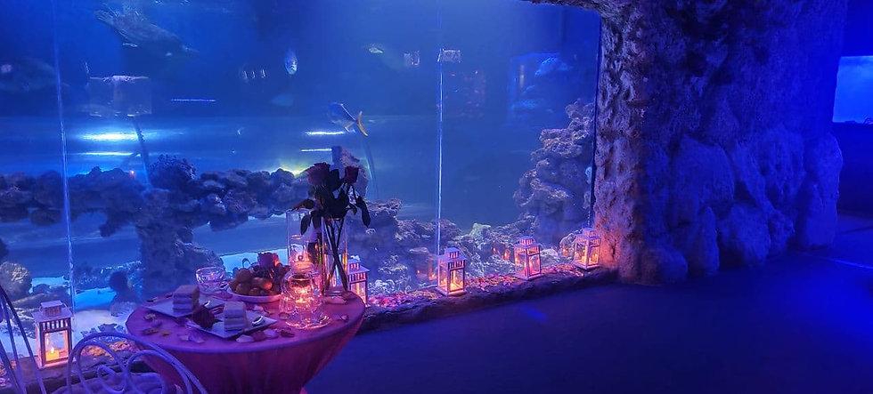 Романтическое свидание в Океанариуме в Киеве