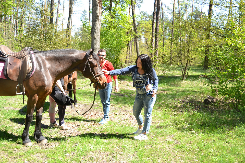 Романтический ужин в лесу с прогулкой на лошадях, Киев, Сервис романтики Альтечо 6