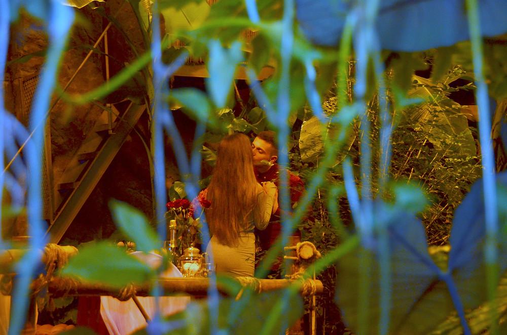 Романтический ужин в оранжерее, тропики, водопад, Киев, Альтечо