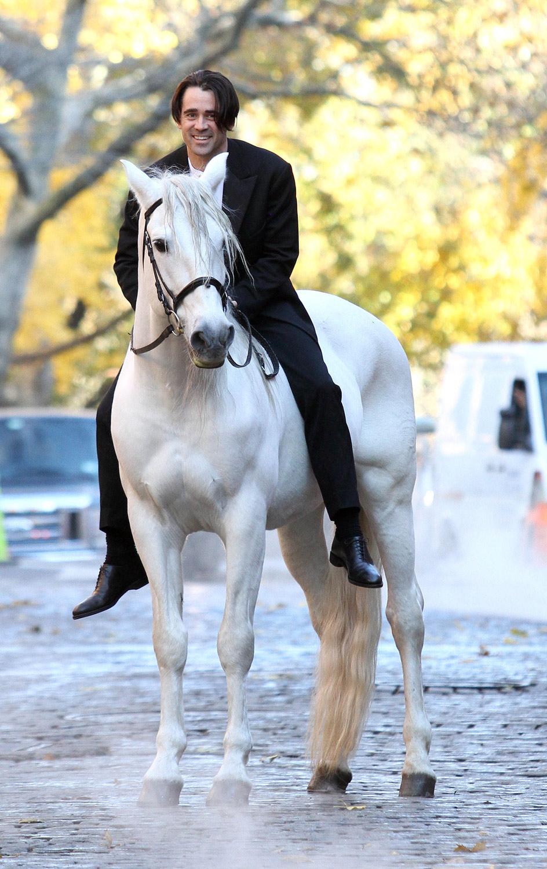 Принц на белом коне (9)
