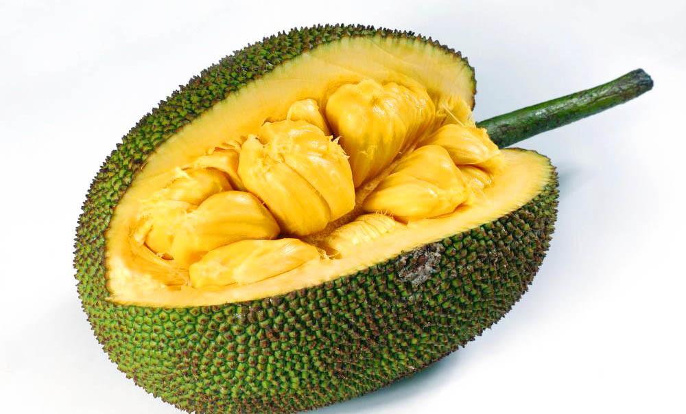Джекфрут, Jackfruit, хлебное дерево