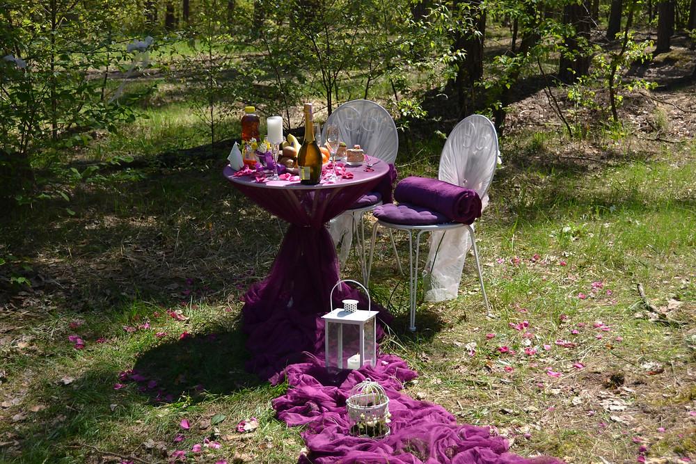 Романтический ужин в лесу с прогулкой на лошадях, Киев, Сервис романтики Альтечо 11