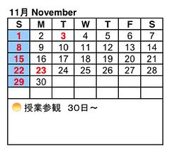 11. Nov 2020.png