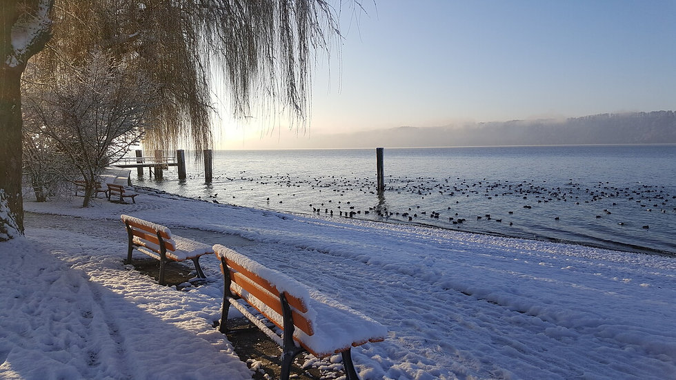 Winter Sipplingen 2019 (19) (1).jpg