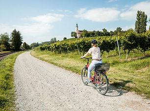 dbt-fahrradtour-allgemein_053_be.jpg