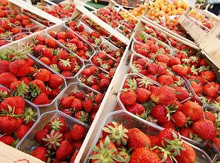 Erdbeeren(c) Tourist-Information Friedri