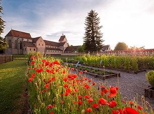 Insel Reichenau Hortulus_klein.jpg