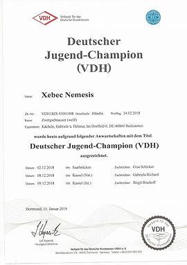 Urkunde_Deutscher_Jugend_Champion.jpg