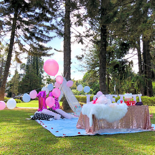 18th Birthday picnic