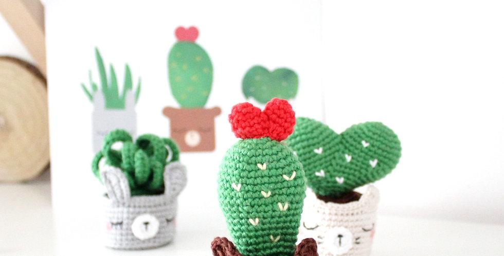 KIT Cactus Forever