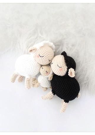 Bouclette le mouton