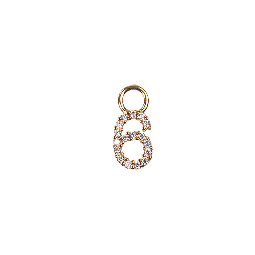 Number charm 6