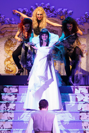 La Regina di Ghiaccio - Il Musical