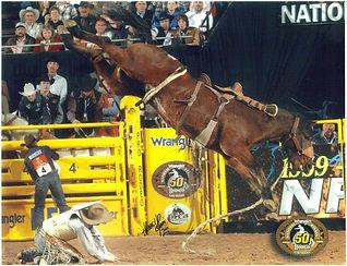 12 Let R Rip  cowboy Dusty Hauser.jpg