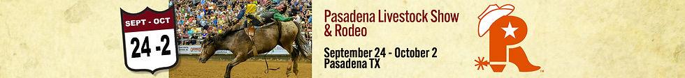 Pasadena Rodeo Strip.jpg