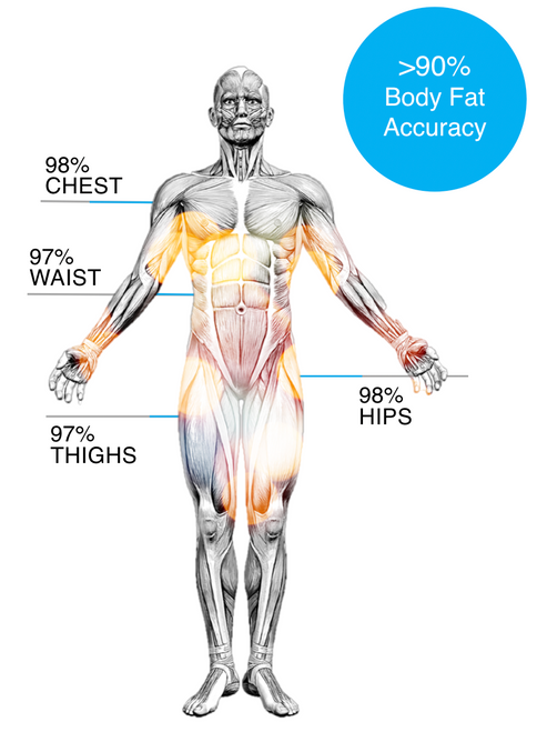 BCT body with accuracy.png