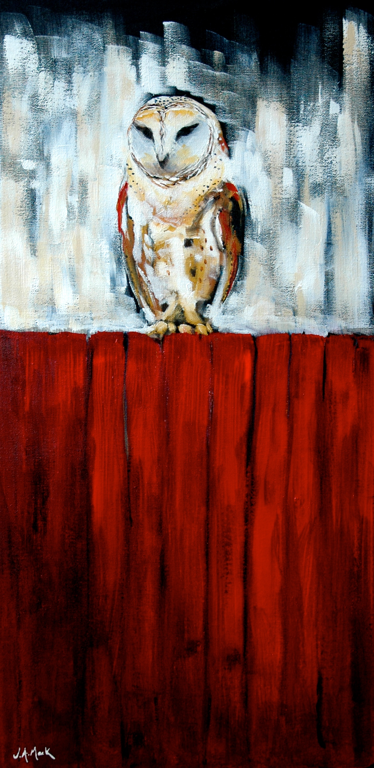 Red Barn Owl