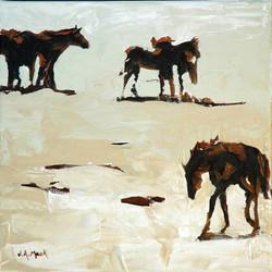 Desert Jewels XII