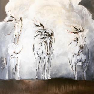 Prairie Ghosts II