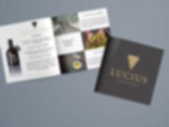 Lucius-FlyerMockup.jpg