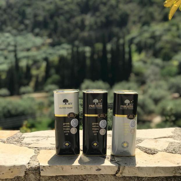 precious-olive-tree-3.jpg