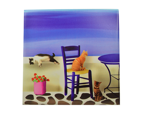 Cats Ceramic Coaster