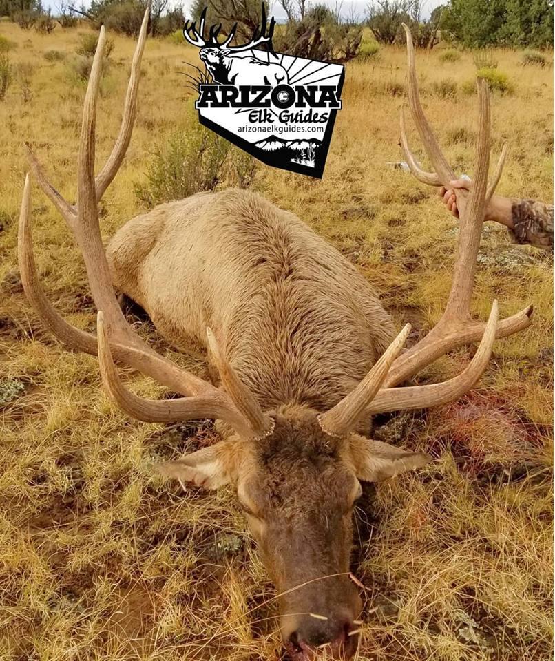 Rob Elk 2 2018