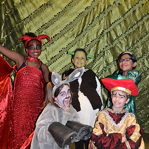 Shrek the Musical!