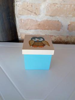 Caixa Azul - Detalhe Tampa Coruja