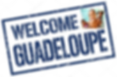 logo welcome guadeloupe.png