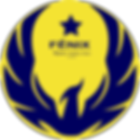 fenix-negocios-site1_d200.png