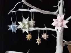 Moravian Stars - pastel