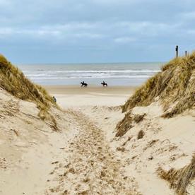 Boswachterspad Noordzeewandeling: mooie wandelroute in Schoorl