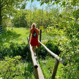 Klompenpad Turfvelderpad: een mooie wandelroute in Midden Nederland