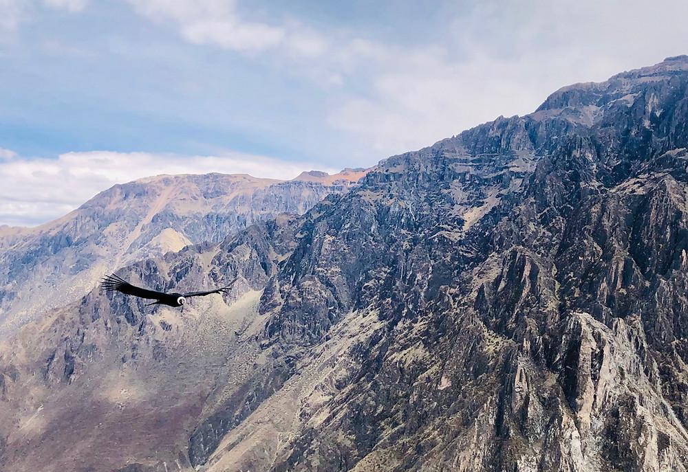 Colca-canyon-hoogteziekte