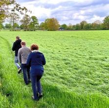 Klompenpad Huinerpad: boerenlandschap in buitengebied Putten