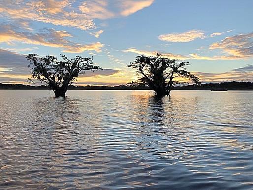 Ecuador: de Amazone in met veertien corpsballen